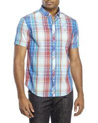 Original Penguin | Blue Classic Fit Plaid Button-Down Shirt for Men | Lyst
