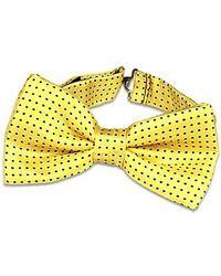 FORZIERI | Yellow Polkadot Pre-tied Bowtie for Men | Lyst