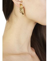 Virzi+de Luca - Metallic Gold Tone Tucan Earrings - Lyst