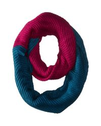 The North Face | Blue Hudson Scarf | Lyst