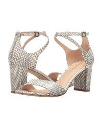 Via Spiga - Multicolor Wendi Ankle Strap Snake Print Block Heel Dress Sandals - Lyst