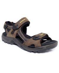 Ecco - Natural Men's Yucatan Sandals for Men - Lyst