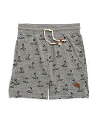 Altru - Gray Palm Tree Shorts for Men - Lyst