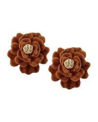 Gogo Philip | Brown Earrings | Lyst