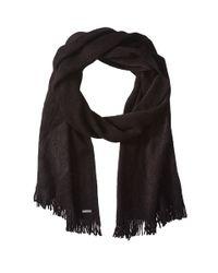 Calvin Klein | Black Soft Acrylic Fringe Scarf | Lyst