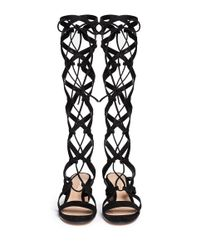 Gianvito Rossi - Black Suede Knee High Lace-Up Gladiator Sandals - Lyst