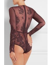 I.D Sarrieri Multicolor Chantilly Lace And Stretch-tulle Bodysuit