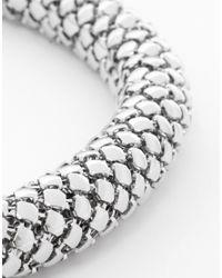 Coast - Metallic Snake Choker Necklace - Lyst