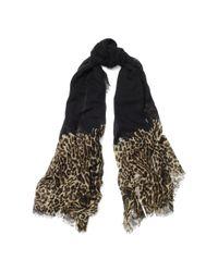 Ralph Lauren | Black Leopard-print Wool-blend Scarf | Lyst