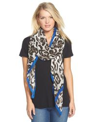 Vince Camuto Black 'leopard Love' Scarf