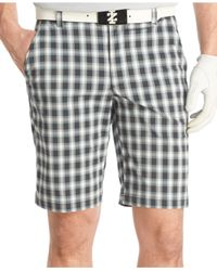 Izod | Black Relaxed Plaid Golf Shorts for Men | Lyst