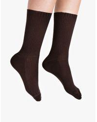 Hue | Green Classic Rib Sock | Lyst