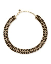 House of Harlow 1960 | Blackbird Golden-Framed Arrow Collar Necklace | Lyst