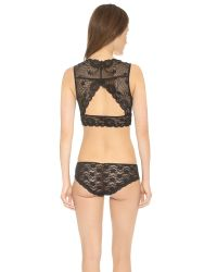 Free People | Essential Lace Evangelina Crop Bra - Black | Lyst