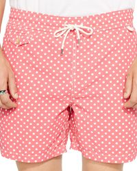 Ralph Lauren | Pink Polo Traveler Dotted Swim Shorts for Men | Lyst