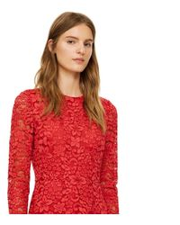 Tory Burch | Red Lace Gown | Lyst