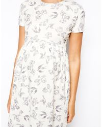 ASOS - Multicolor Skater Dress With Textured Bird Print - Lyst