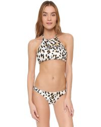 Suboo - Multicolor Sandy Leopard Bikini Bottoms - Lyst