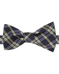 Tommy Hilfiger | Yellow Navy Plaid To-tie Bow Tie for Men | Lyst