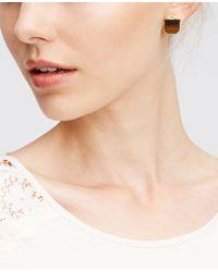 Ann Taylor | Brown Hexagon Stud Earrings | Lyst
