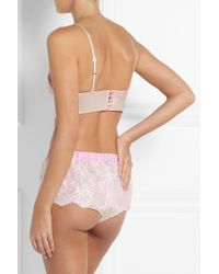 Rosamosario | Pink Amore Senza Confini Chantilly Lace Soft-Cup Bra | Lyst