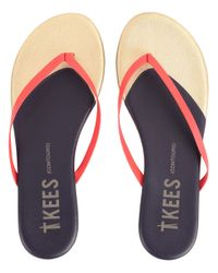 TKEES | Multicolor Contours | Lyst