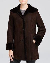 Maximilian - Brown Wing Collar Lamb Shearling Jacket - Lyst
