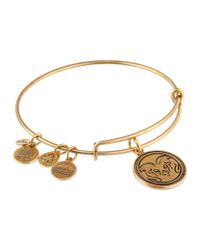 ALEX AND ANI | Metallic Colorado State University® Mascot Charm Bangle | Lyst
