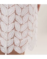 Hobbs | White Leaf Lace Dress | Lyst
