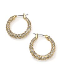 ABS By Allen Schwartz - Metallic Gold Coast Pavé Hoop Earrings/0.7 - Lyst
