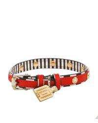 Henri Bendel - Red Crystal Rivet Dog Collar - Lyst