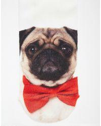ASOS - Black Socks 2 Pack With Pug Print for Men - Lyst