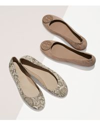 Tory Burch - Brown Logo Minnie Travel Ballet Flat, Embossed Suede - Lyst