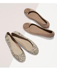 Tory Burch | Brown Logo Minnie Travel Ballet Flat, Embossed Suede | Lyst