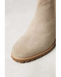 Miss Albright - Brown Trimmed Chelsea Boots - Lyst