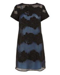 Coast | Blue Daisy May Dress | Lyst