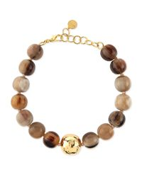 Nest - Brown Horn Beaded Short Necklace - Lyst