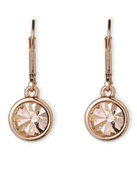 T Tahari | Metallic Rose Gold-Tone Lever Back Earrings | Lyst