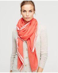 Ann Taylor | Red Equestrian Blanket Scarf | Lyst