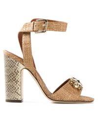 Dolce & Gabbana   Brown Bow Sandals   Lyst