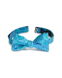 Ted Baker | Blue Paisley Silk Bow Tie for Men | Lyst