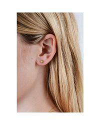 Lee Renee | Metallic Shell Stud Earrings Gold Vermeil | Lyst