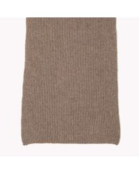 Tommy Hilfiger | Brown Cashmere Tailored Scarf for Men | Lyst