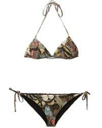 Valentino | Brown Butterfly Print Bikini | Lyst