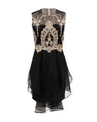 Notte by Marchesa | Black Sleeveless Gold Lace Cocktail Dress | Lyst