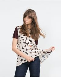 Zara | Brown Printed T-shirt | Lyst