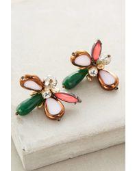Anthropologie | Pink Adelis Earrings | Lyst
