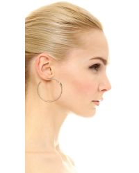 Pascale Monvoisin | Metallic Carla Hoop Earrings - Gold/turquoise | Lyst