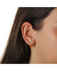 Vita Fede - Metallic Titan Stone Earrings In Yellow Gold And Pearl - Lyst