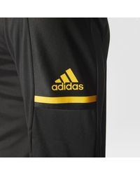 Adidas - Black Bruins Authentic Pro Jacket for Men - Lyst